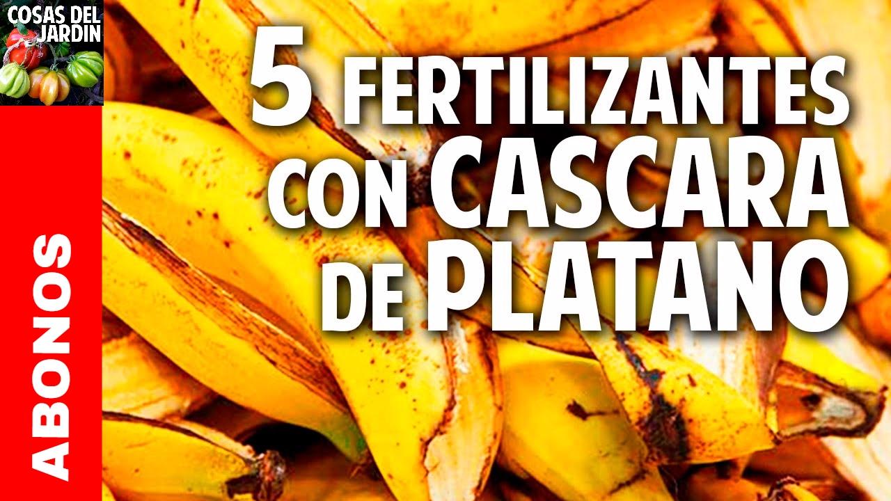 5 fertilizantes con Cascara de Plátano – Más Frutos! Potasio!