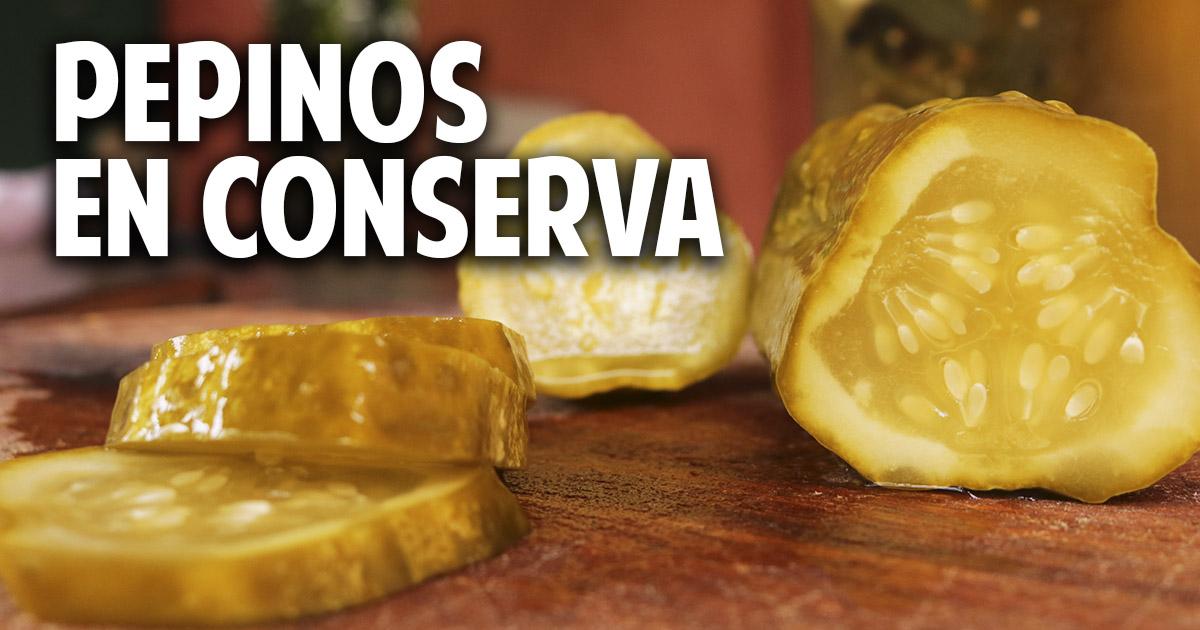 Pepinos en conserva con fermentación natural, facil y saludable