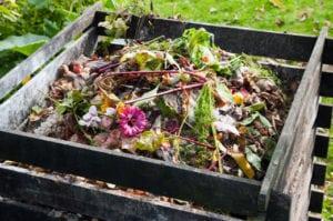 Cuáles son las formas más rápidas de compostar: consejos sobre cómo hacer el compost más rápido - 1
