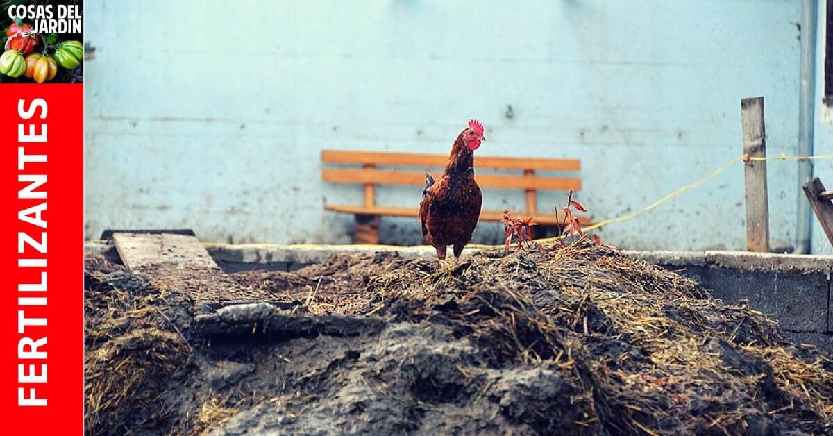 como usar abono gallinaza #huerto #huerta #huertourbano #jardineria #jardin #cultivar #compost