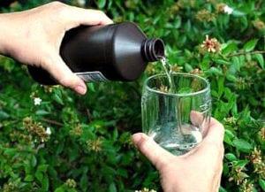 Usos del agua oxigenada en el jardín. Efectos del agua oxigenada en las plantas. - 1