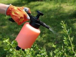 aplicacion foliar del agua oxigenada