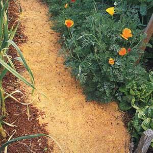 Cual Es La Forma Correcta De Usar El Aserrín En El Huerto Y El Jardín Consejos Y Precauciones Cosas Del Jardin