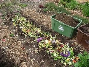 compostaje en zanjas