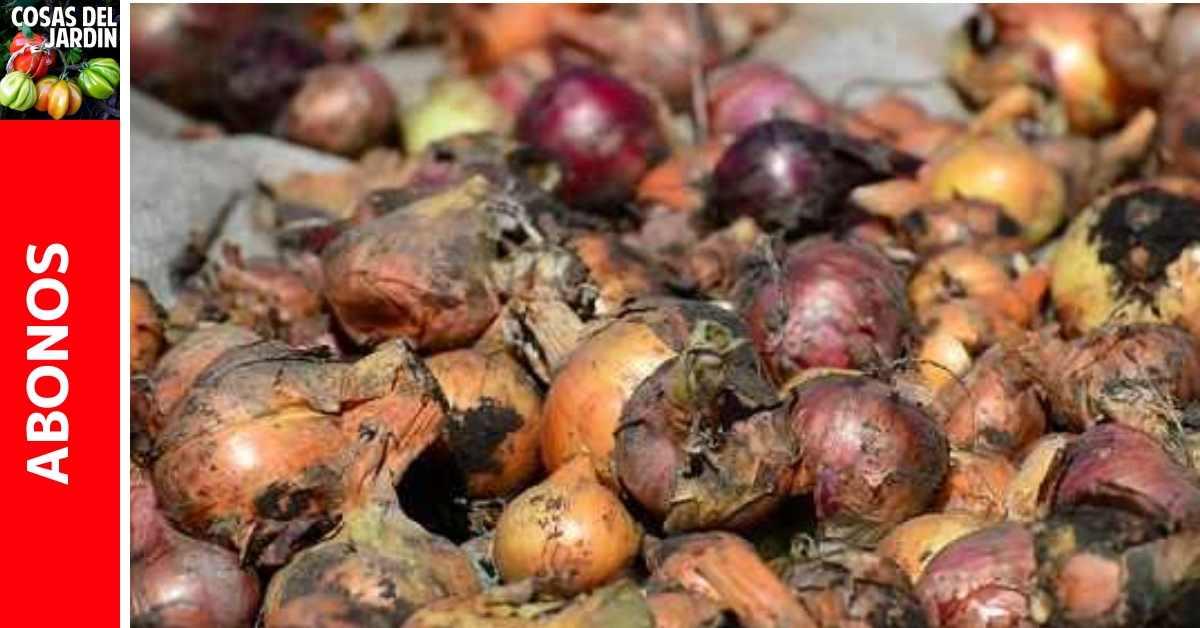 ¿Se pueden compostar las cebollas? cómo hacer composta con los restos de cebollas?