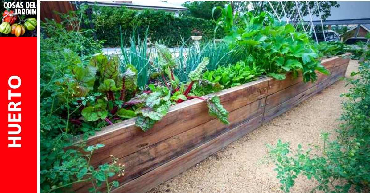 Cuánto se necesita plantar en un huerto para alimentar una familia tipo?