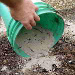 la ceniza es un excelente Abono casero para plantas Te dejo una selección de los mejores abonos caseros para plantas para experimentar #huerto #huertourbano #jardin #jardineria #cultivar