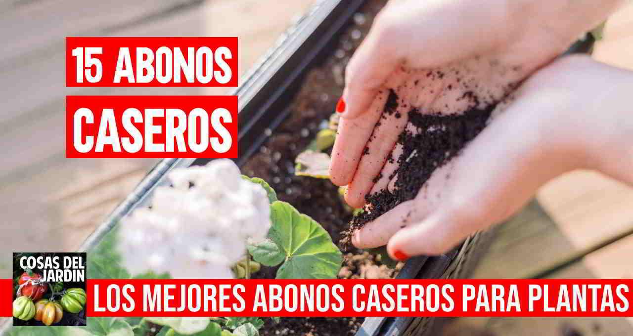 Te dejo una selección de los mejores abonos caseros para plantas para experimentar #huerto #huertourbano #jardin #jardineria #cultivar