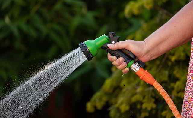 12 Herramientas de Jardinería Esenciales para principiantes - 9