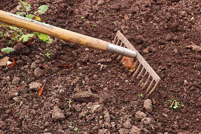 12 Herramientas de Jardinería Esenciales para principiantes - 7