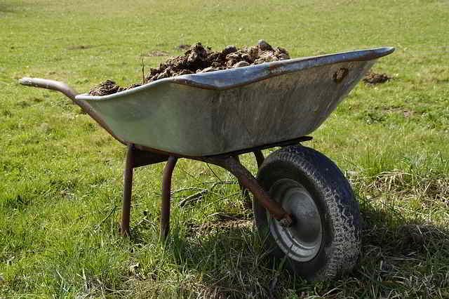 12 Herramientas de Jardinería Esenciales para principiantes - 11
